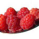 Hrono nutricija po fazama